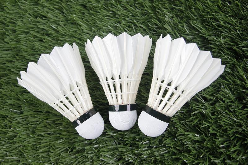 badminton betting uk